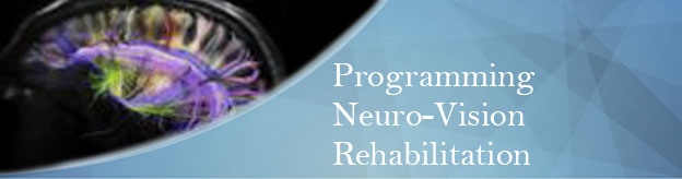 Programming Neuro-Vision Rehabilitation