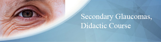 Secondary Glaucomas, Didactic Course